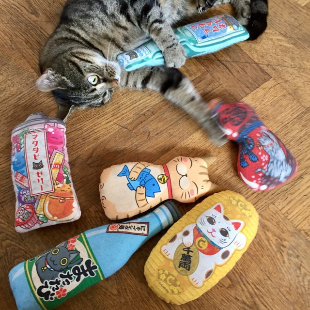 Image #1 from Saffy_cat