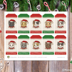 Cute Santa Cats Christmas Gift Tags with green and red. Set of 10