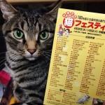 もうすぐ、まるごと猫フェスティバル! ⇒ブログ更新しました