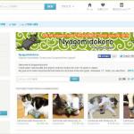 Etsyに、NyagomidokoroのショップをOPENしました!⇒ブログ更新しました!