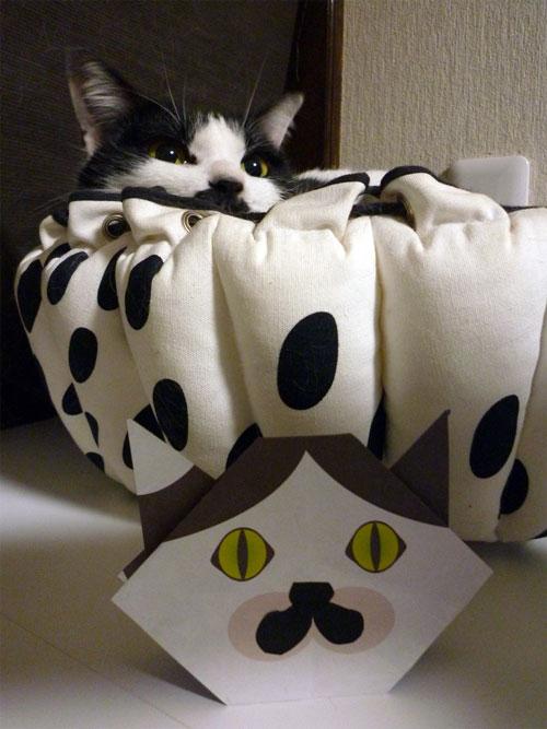 猫折り紙を掲載していただきました!