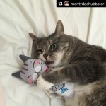 Thank you @montydachubbster for sharing lovely photo with Cat Kicker!!How adorable, Monty!!I am really happy he likes it…See more cat toys:https://www.etsy.com/jp/shop/NyagomidokoroorPlease visit the URL in my profile.国内は*にゃごみ処*で検索してねHttp://www.nyagomi.com..#Repost @montydachubbster with @repostapp・・・I love my new toy from @nyagomidokoro