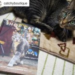 Mom got a wonderful book, SHOP CATS OF NEW YORK!We LOVE IT!!! She is so excited!!She posted on @catchyboutique but also reposted here.This book is really lovely with lots of beautiful cats photos.  .Everypawdy, including Japanese like us, definitely can enjoy!..In Japan Autumn is the purrfect season for reading.It takes a long time for me because it is written in English, but I will enjoy this wonderful Shop Cat Stories and amazing Photographs..欲しかった本をゲットしました!看板猫ちゃんのストーリーと写真のボリュームがすごい!英文を読むのに時間がかかるけど、読書の秋だし毎日少しずつ楽しみたいです!Introductionの部分を読んだだけで、すごく引き込まれちゃいました。おすすめです ..🐈🐈🐈🐈🐈..#Repost @catchyboutique with @repostapp・・・SHOP CATS OF NEW YORK has finally arrived from NY to Japan!!.Today, the Catchy team would love to introduce you one of MUST-Have cat book, SHOP CATS OF NEW YORK!.This book is just not about sharing cute pictures of NY cats, but also sharing deeper human-animal interaction stories behind each photo..Each photo and its story made the Catchy team's heart melted completely every time we flipped a page..It would be wonderful if cat lovers in Japan and NY were be able to share the love of cat though SHOP CATS OF NEW YORK. ..Book DetailsBook Name: Shop Cats of New YorkIG account: (@shopcatsofnewyork)Author: Tamar Arslanian(@ihavecat )Photo: Andrew Marttila(@iamthegreatwent ).Pick up your copy on Amazon!http://amzn.to/2fcgZvo.※This book is also available in amazon.jp!!(日本のアマゾンでも入手できます!)http://amzn.to/2fQH4kJ..NYから念願の本、SHOP CATS OF NEW YORKが届きました!.今日はCatchyより、猫好き必見の猫本、@shopcatsofnewyork さんのSHOP CATS OF NEW YORKをご紹介します!.この本はNYのかわいい猫写真が載っているだけではなく、その一枚に秘められた深い人間と動物間にある物語まで楽しむことができます。.ページをめくる度に、それぞれの写真とそれに秘められた物語にCatchyメンバーの心は完全に溶けてしまいました。.SHOP CATS OF NEW YORKを通じて、日本とNYの猫好きたちが分かち合える事ができたらどんなに素敵でしょう・・・!.#shopcatsofnewyork