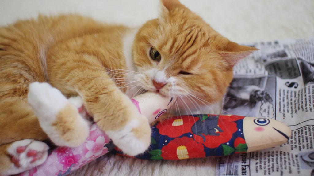 またたびのおもちゃ猫キッカー にゃごみ処