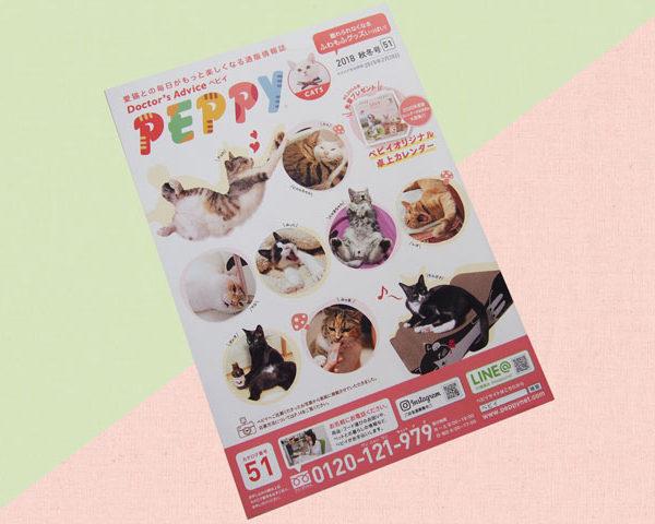 PEPPY(ペピイ)の通販、カタログの猫キッカー注文について